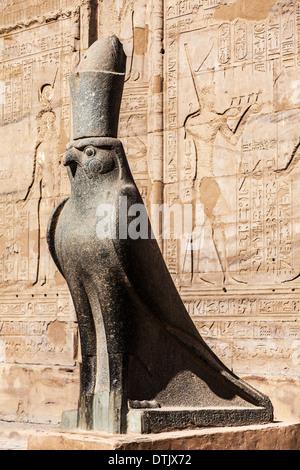 The granite statue of the falcon-headed god Horus at the Ancient Egyptian Temple of Horus at Edfu. Stock Photo