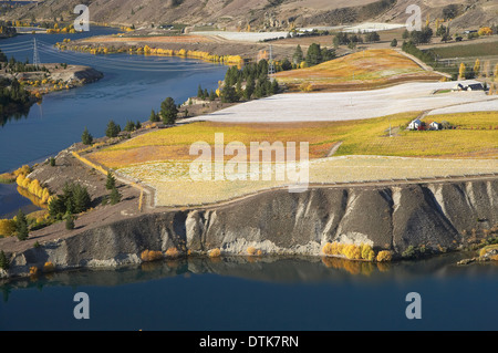 Carrick Vineyards and Lake Dunstan, Bannockburn, Central Otago, South Island, New Zealand - aerial - Stock Photo