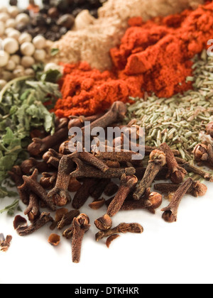 closeup of various spices over white - Stock Photo