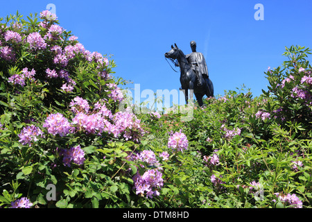 Statue of the Duke of Wellington Arthur Wellesley on his horse Copenhagen on Round Hill Aldershot, with its Rhododendron - Stock Photo