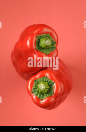 Two red peppers on red background - Stock Photo