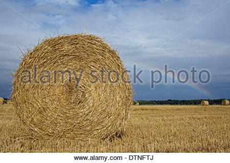 Baled round hay bales and rainbow over field on rainy day - Stock Photo