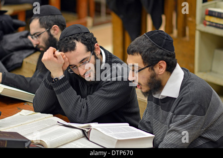 Lubavitch Hassidic students studying Talmud at their headquarters and synagogue at 770 Eastern Parkway in Brooklyn, - Stock Photo