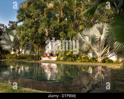India, Goa, Siolim House, Portuguese colonial era hotel, swimming pool surrounded by green palms - Stock Photo