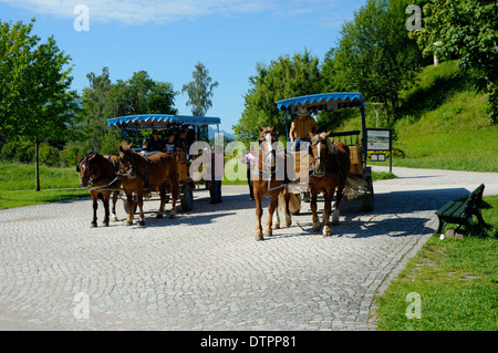 Carriages, Herrenchiemsee, Chiemsee, Bavaria, Germany - Stock Photo