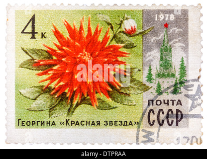 """USSR - CIRCA 1978: A stamp printed in Russia shows Dahlia """"Red Star"""" and Spasski Tower, series Moscow Flowers, circa - Stock Photo"""