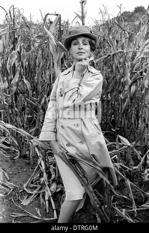 Sixties fashion model with raincoat and hat posing in a maize field - Stock Photo