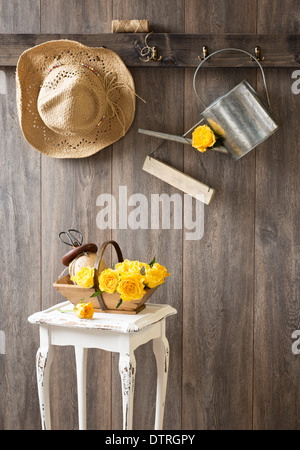 Freshly picked yellow roses in trug in garden shed - Stock Photo