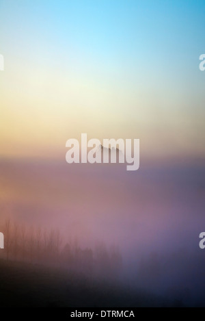 Sunrise and early morning mist over the hills and valleys in Mangawhai, Northland, North Island, New Zealand - Stock Photo