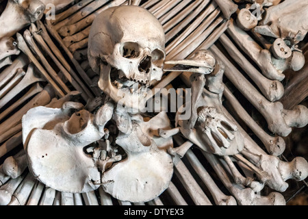 Coat of Arms in Bone Church, Czech Republic - Stock Photo