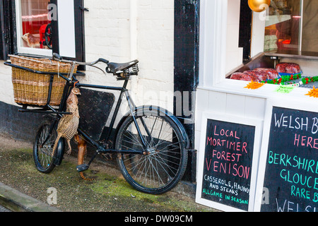 Brace of pheasant on bicycle in Ludlow, Shropshire - Stock Photo