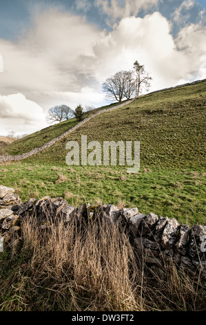 Hillside and dry stone wall in Dovedale, Peak District National Park, UK - Stock Photo
