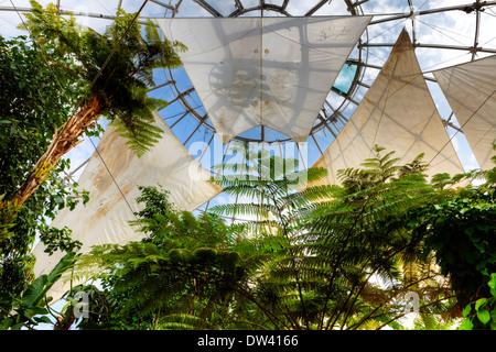 La biosfera, Genoa - Stock Photo
