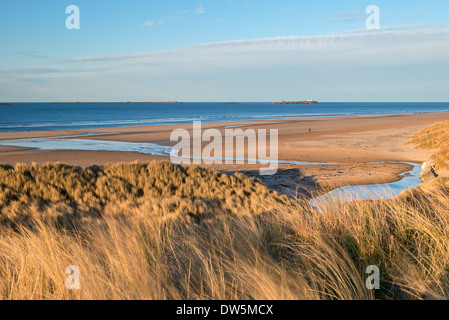 View across the beautiful Bamburgh Beach towards the Farne Islands, Northumberland, England. Spring (April) 2013. - Stock Photo