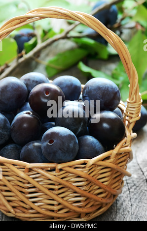 Ripe plums in basket on the wooden table, close up view - Stock Photo