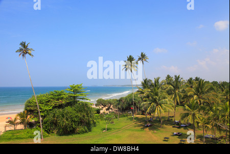 Sri Lanka, Bentota, beach, palms, scenery, - Stock Photo