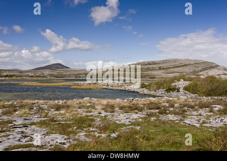 View of carboniferous limestone landscape around lough Lough Geallain Mullagh More Burren N.P. The Burren County - Stock Photo