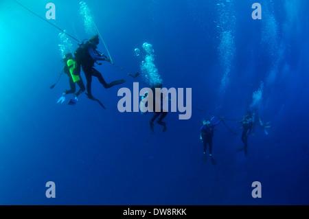 Scuba divers descending on a rope, Honolulu, Oahu, Hawaii, USA - Stock Photo