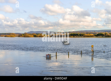 Floods on the field at Pulborough, West Sussex, UK - Stock Photo