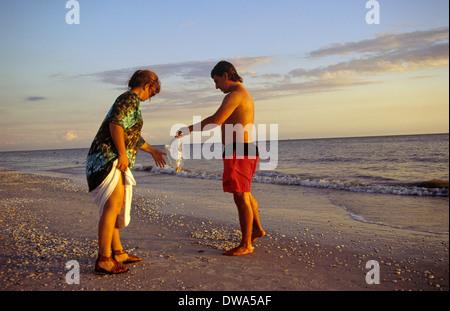 Gathering shells on the beach, Sanibel and Captiva Islands, Florida, USA - Stock Photo