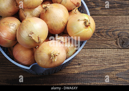 Self grown onions in a bowl on wooden table - Stock Photo