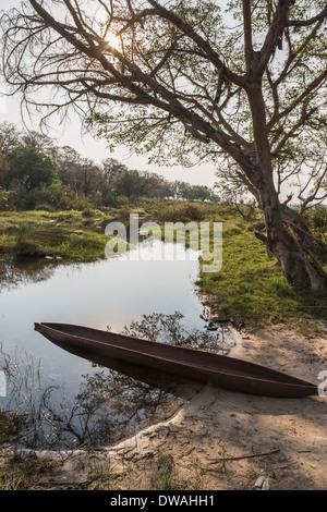 Mokoro boat on river bank at dusk at Xigera Camp, Okavango Delta, Botswana, southern Africa - Stock Photo