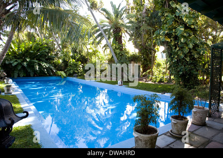 Swimming pool at the Ernest Hemingway Home & Museum, Key West, Florida, USA - Stock Photo