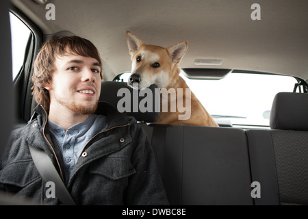 Young man and his cross bred alsatian dog in car back seat - Stock Photo