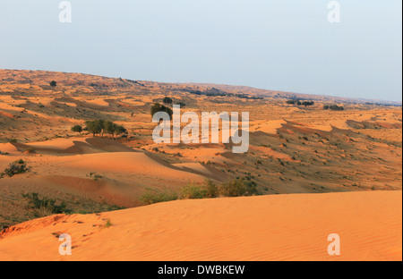 Wüste Rub al Khali - Ras al Khaima - Stock Photo