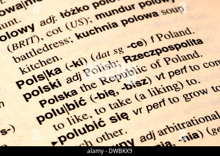 how to translate pdf polish to english