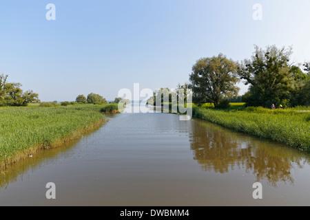 Austria, Vorarlberg, Hard, Dornbirn Ach, nature reserve Rhine Delta - Stock Photo