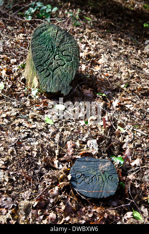 A pet cemetery in a wood with 2 tree trunk tomb stones with pets name inscribed. - Stock Photo
