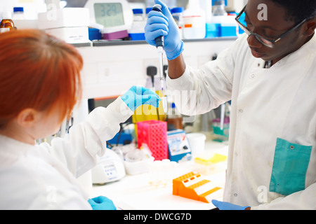 Two scientists pipetting sample into test tube in lab - Stock Photo