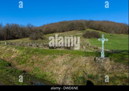 Vineyard outside St Martial, Varen, Tarn et Garonne, Midi-Pyrenees, France - Stock Photo