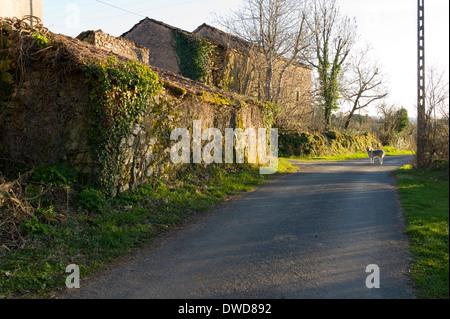 St Martial, Varen, Tarn et Garonne, Midi-Pyrenees, France - Stock Photo