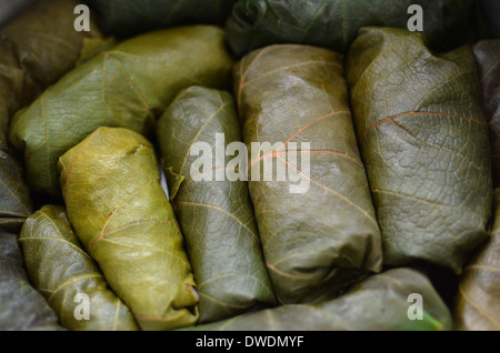 Close up of Sarma dish - Rice and mint wrapped in grape vine leaves. Prepared before cooking. - Stock Photo