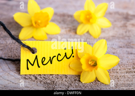 Yellow flowers with tag with the french word merci on it which means label with the french word merci which means thanks yellow background stock photo mightylinksfo Images