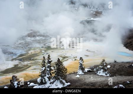 Norris Geyser Basin, Yellowstone National Park, Wyoming, United States - Stock Photo