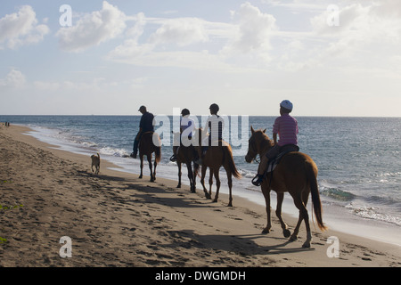 People Horse riding at sunset on the beach. - Stock Photo