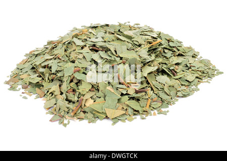 crushed eucalyptus leaves to prepare herbal tea on a white background - Stock Photo
