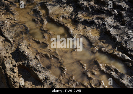 Footprints in waterlogged muddy country footpath after a long rainy period. Metaphor stick in the mud, muddy texture, - Stock Photo
