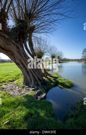 River Stour in Dedham Vale - Stock Photo