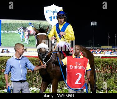 Dubai, UAE. 8th March, 2014. Christophe Soumillon and Vercingetorix in the winners enclosure after his victory in - Stock Photo