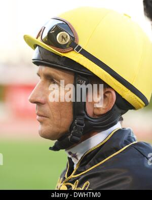 Dubai, UAE. 8th March, 2014. Adrie De Vries was competing in the Meydan Sprint during Dubai World Cup Carnival Credit: - Stock Photo