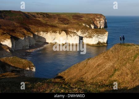 Sea cliffs at Flamborough Head on the North Yorkshire coast in the United Kingdom - Stock Photo