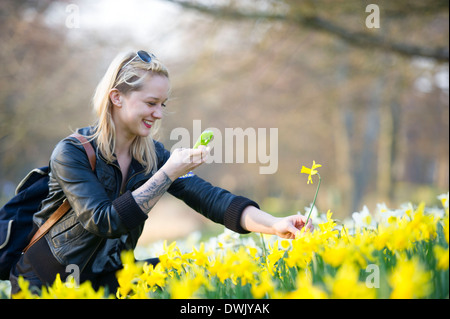 A girl photographs a daffodil flower using her smartphone. - Stock Photo