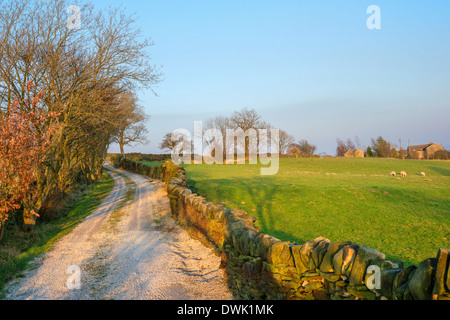 Farm lane near Holmfirth in the late afternoon sun, Holme Valley, West Yorkshire, England, UK - Stock Photo