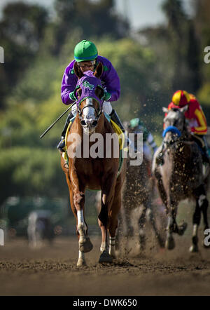 Arcadia, CA, USA. 9th Mar, 2014. California Chrome, ridden by Victor Espinoza wins the San Felipe Stakes (G2) at - Stock Photo