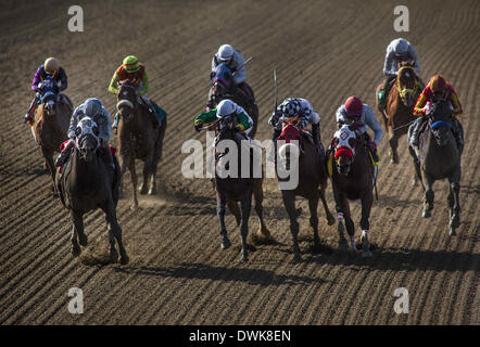 Arcadia, CA, USA. 8th Mar, 2014. Sahara Sky, ridden by Joel Rosario wins the San Carlos Stake Stakes (G2) at Santa - Stock Photo
