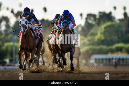 Arcadia, CA, USA. 9th Mar, 2014. Game on Dude, ridden by Mike Smith races next to Hear The Ghost, ridden by Joel - Stock Photo